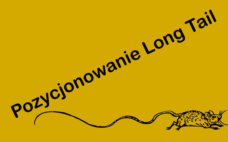 pozycjonowanie-long-tail-pozycjonowanie-na-długi-ogon